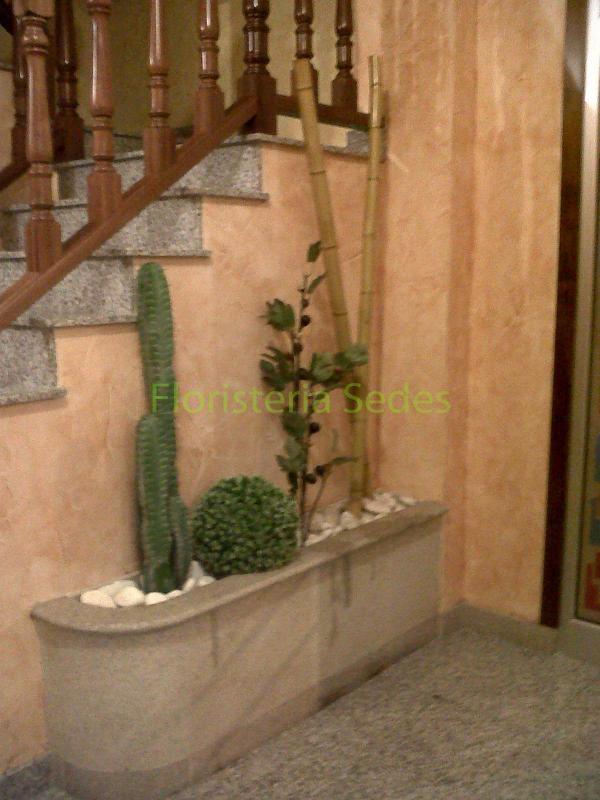 portal con bambú y cactus.
